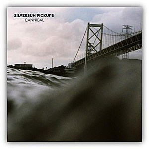 Silversun Pickups singles collection
