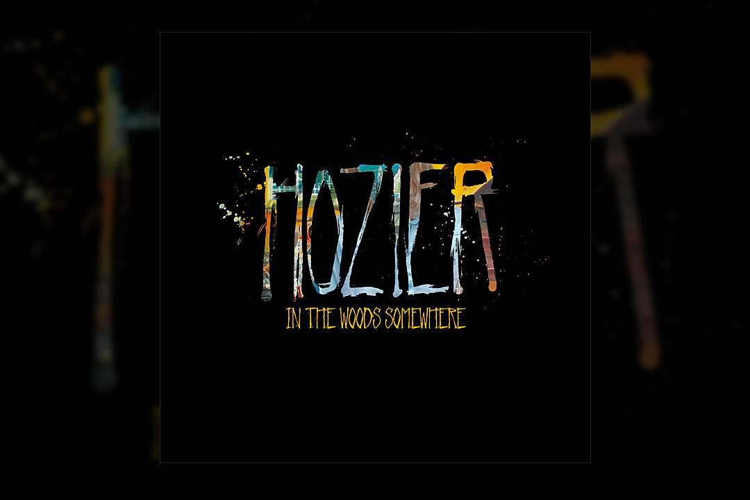 The Top 10 Vinyl Releases Of 2014 4 Hozier In The Woods