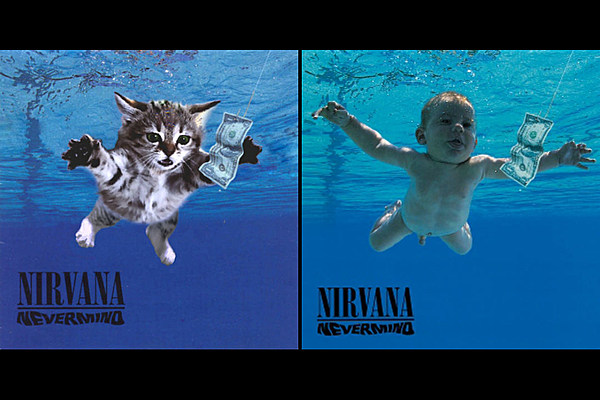 See Your Favorite Album Covers Recreated With Kittens