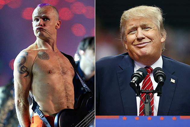 Flea / Donald Trump